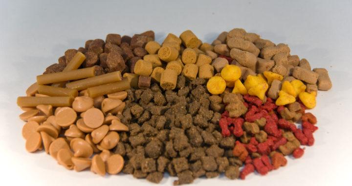 nourriture pour chien sans glucides