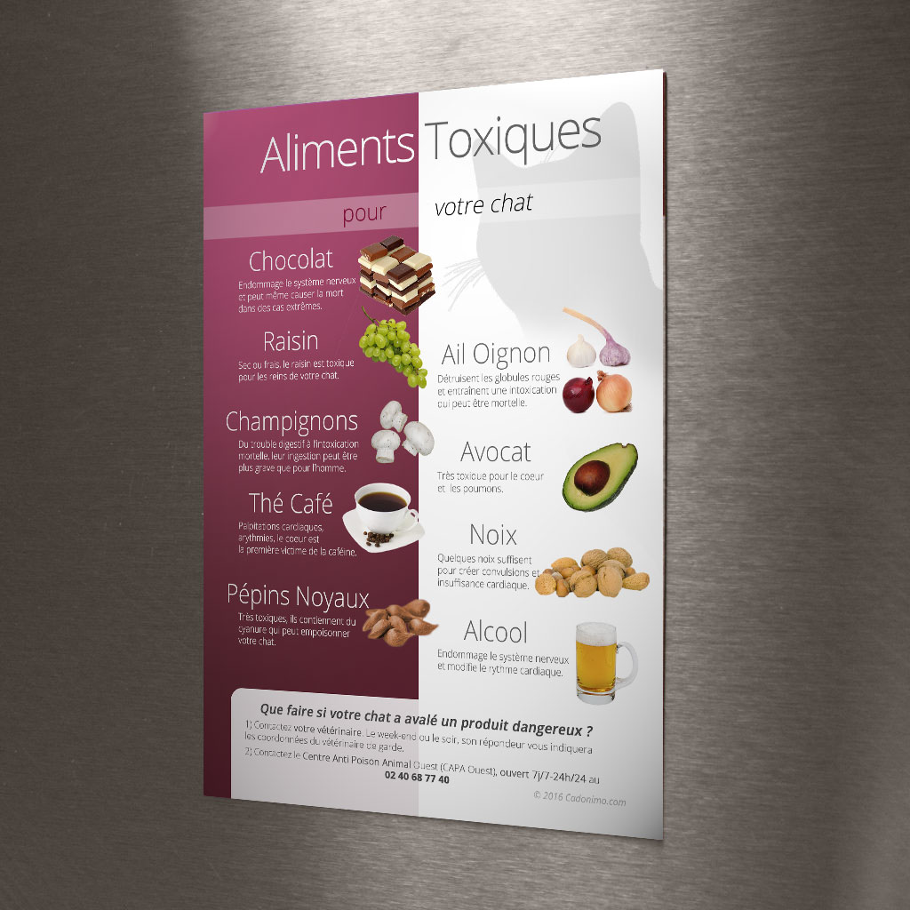Magnet Aliments Toxiques Chat